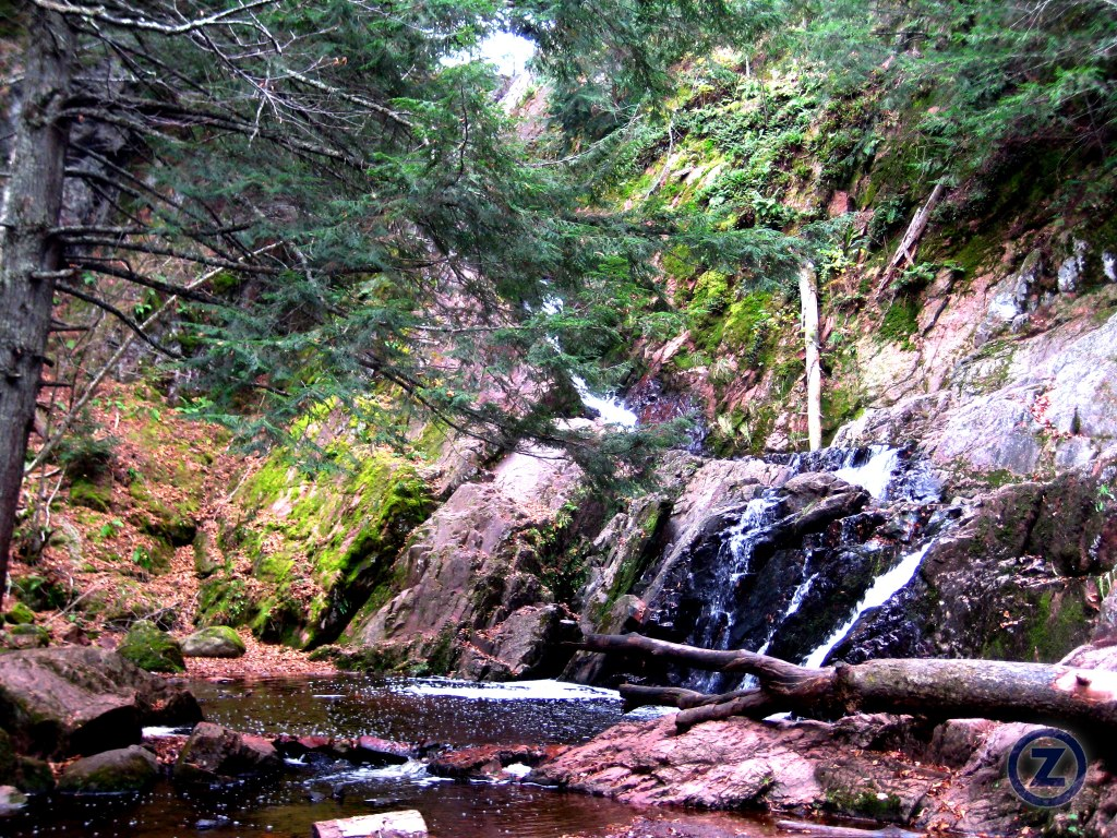 Wisconsin 2010 for Morgan falls
